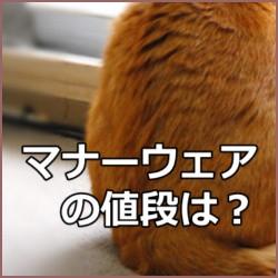 猫の紙おむつ