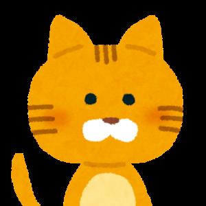 飼い猫さま